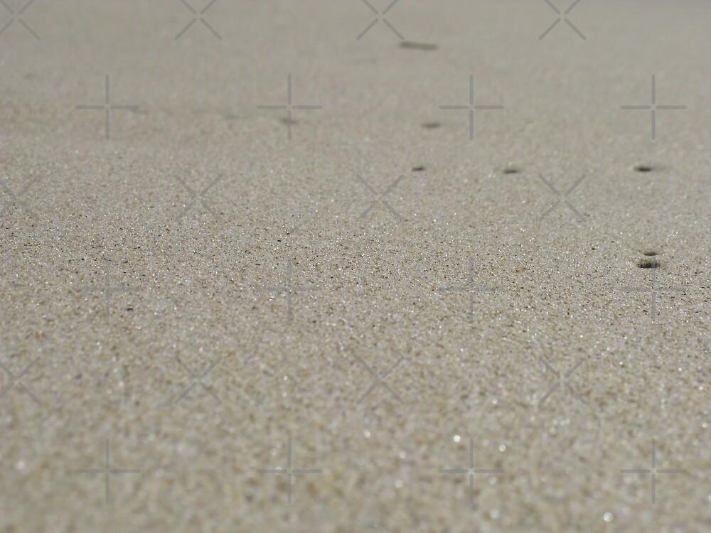 Sand Grain by aimznabz