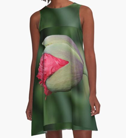 Papavar Somnifarum - The Beginning A-Line Dress