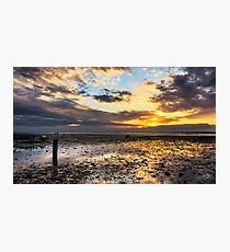 Oyster Faming Photographic Print