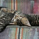 sleeping kitties 2 by little1sandra