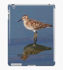 Least Sandpiper - Calidris minutilla iPad Case/Skin