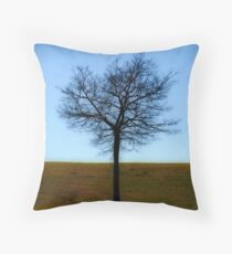 knowledge Throw Pillow