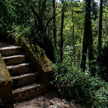 Stairway to Nature by MuggleJoanne