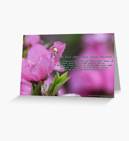 John 4:14; His word, a fountain, a promise, if kept, everlasting life!  Greeting Card