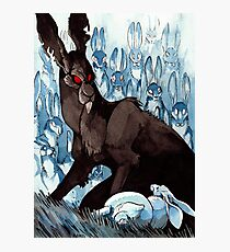 The Black Rabbit Photographic Print