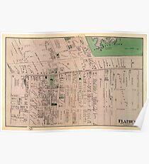 Póster Mapa de Flatbush 1873
