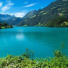Green Lake Lucerne by FelipeLodi
