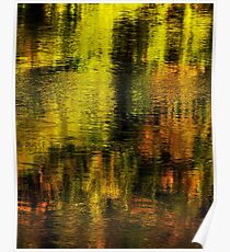Gold on Rhone river Poster