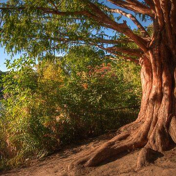 Golden Tree by Jessticulate