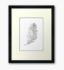Feather Grey Illustration Watercolor Painting Drawing Image Poster Framed Print