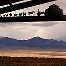 Nevada by elasita