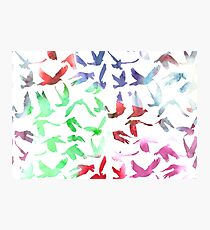 Watercolor Doves Photographic Print