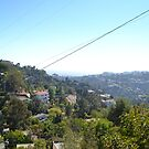Runyon Park, Los Angeles, USA by rebekahesme