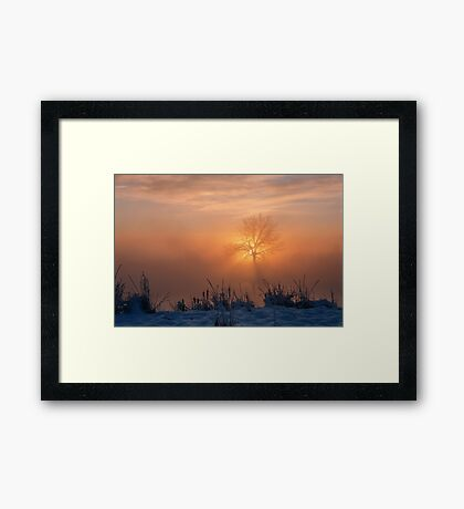 A Moment With Spirit Framed Print