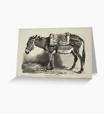 Donkey (Un âne) Vintage Illustration Greeting Card