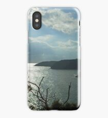 Gorse at Lydstep Head iPhone Case/Skin