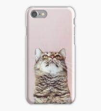 Beautiful cat looking up iPhone Case/Skin