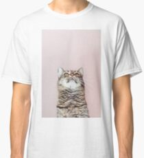 Beautiful cat looking up Classic T-Shirt