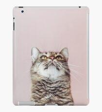 Beautiful cat looking up iPad Case/Skin