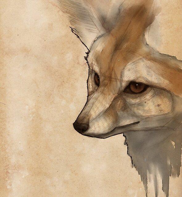 Fennec Fox by Bluecrow10