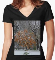 Oct Snowstorm 2016 Women's Fitted V-Neck T-Shirt