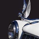 Silver Wings by CarolM