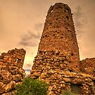 Desert Watchtower by Dale Lockwood