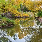 St Vrain Tranquility by Bo Insogna