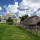 National Botanical Gardens ,Dublin by Martina Fagan