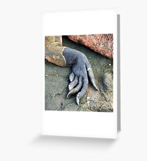 Foot of a marine iguana Greeting Card