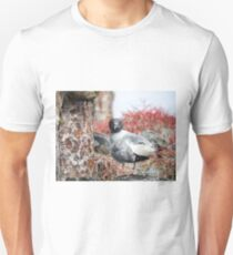 Curious lava gull T-Shirt