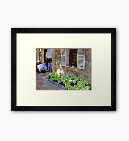 White Shutters And Green Hydrangea Framed Print