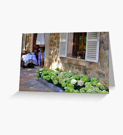 White Shutters And Green Hydrangea Greeting Card