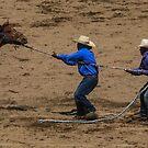 First Rodeo by Shari Galiardi