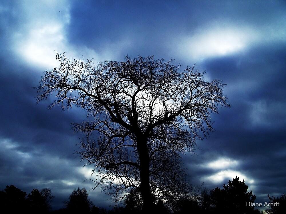 TREE IN BLUE by Diane Arndt