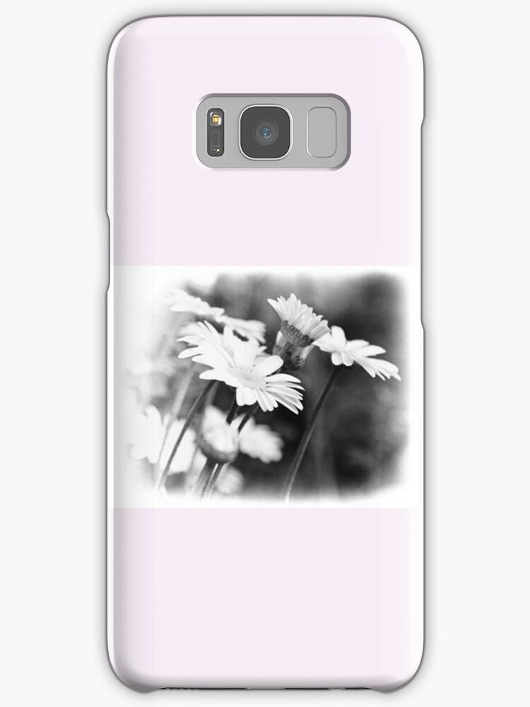 Black n White Daisies by lynn carter
