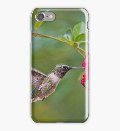 Hummingbird and Red Mandevilla iPhone Case/Skin