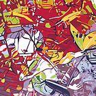 Daintree Reflection by Richard Klekociuk