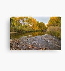 Fishing Stream View Canvas Print