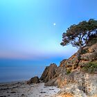 Cliff at Point King, Portsea by susanzentay