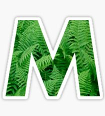 M FERN Sticker