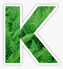 K FERN Sticker