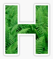 H FERN Sticker