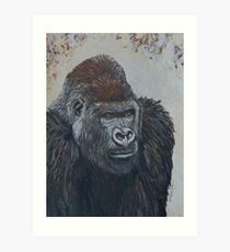 Leader of Gorilla Group Art Print