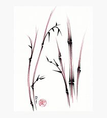 Tenderness  -  Sumie dry brush pen bamboo painting Photographic Print