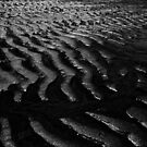 Sandy Ripples by Lee  Gill