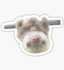 sloth on a vine Sticker
