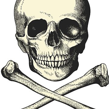Vintage Skull and Crossbones. So scary! by cartoon