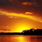 Golden Cloud at Dusk.  Photo Art, Prints, Gifts. by sunnypicsoz