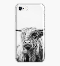 portrait of a highland cow iPhone Case/Skin